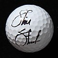 Steve Stricker  Signed Titleist Pro V1x  Ball  PSA/DNA