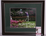 Rory McIlroy Signed & Framed 11 x 14 Photo JSA